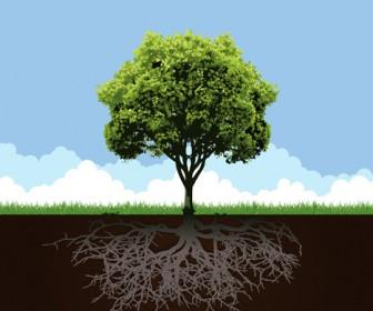 Conceptual Tree Landscape Vector