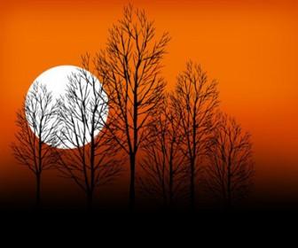 Sunset Scene Vector Landscape