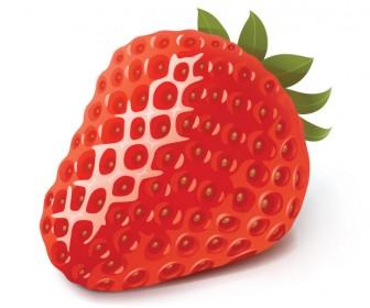 Strawberry Fresh Fruit Vector