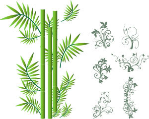 Bamboo Ornament Vector