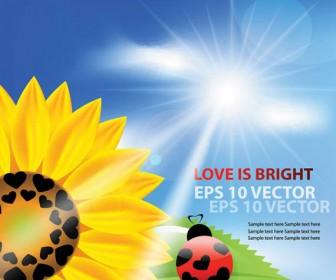 Sun Flower Background Vector