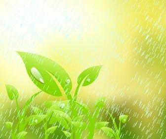 Leaves under Rain Vector illustration