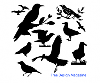 8 Vector Birds Silhouettes