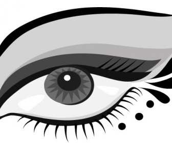 Hand Painted Eye Vector