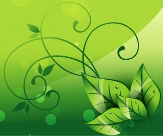 Green Elegant Nature Vector Background