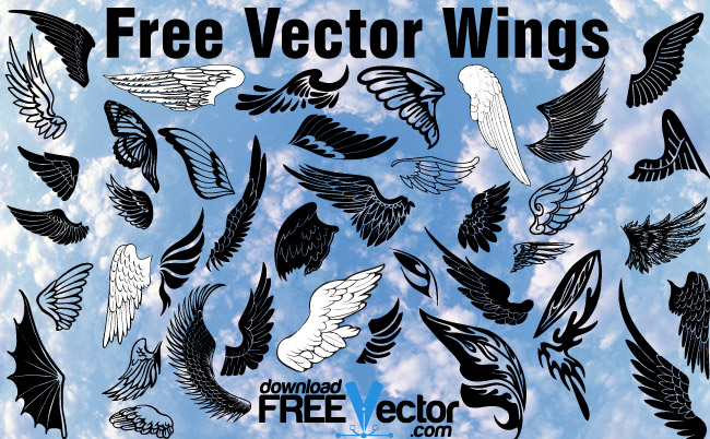 free vector wings illustration download free vector