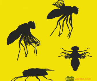 Insect Vector Silhouette Pack of Flies