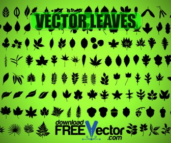 Free Vector Leaf Silhouette Freebie Pack