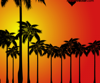 Palm Trees Sunset Silhouette Vector