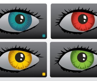 Color Eyes Vector Art