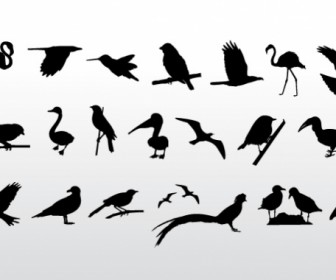 Bird Silhouette Freebies Vector Graphics
