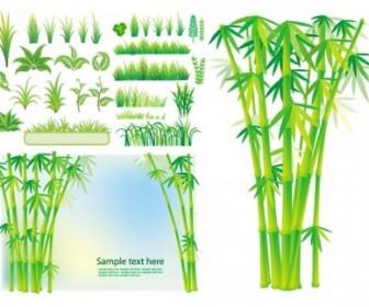 Bamboo Grass Plant Vector Vector Art
