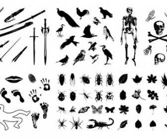 Skeleton Leaves Insects Birds Imprint Sword Silhouette Vector Silhouettes Vector Graphics