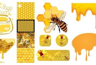 Bee Honey Honeycomb Vector Animal Vector Graphics