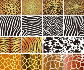 Texture Pattern 01 Vector Pattern Vector Art