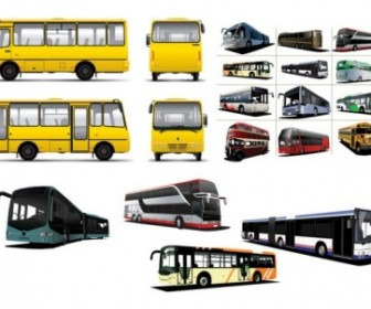 Various Bus Bus Vector Car Vector Art