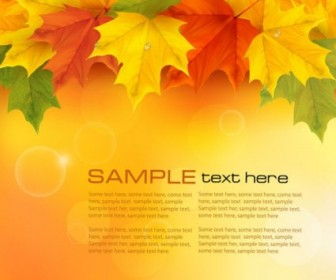 Vector Beautiful Maple Leaf 05 Background Vector Art