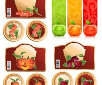 Vector Fruit And Graphics Vector Art