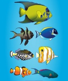 Vector Marine Fish Cartoon Vector Art