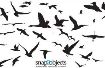 Vector 46 Flying Birds Silhouettes Animal Vector Graphics