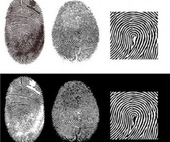 Vector Fingerprint 2 Vector Art