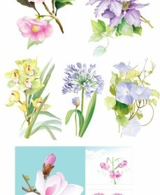 Vector 7 Elegant Watercolor Flowers Flower Vector Art