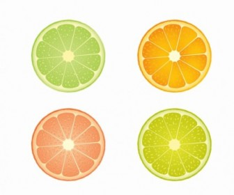 Vector Slices Of Lime And Orange Vector Art