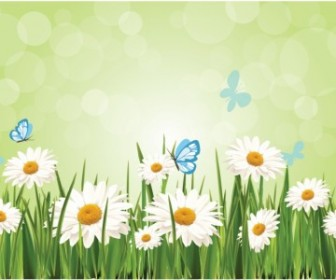 Vector Spring Daisy Background Flower Vector Art
