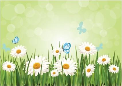 Vector Spring Daisy Background Flower Vector Art Ai Svg