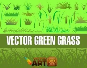 Vector Grass Vector Art