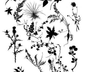 Vector PLANT SILOUETTES Flower Vector Art