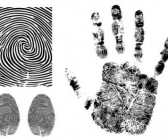 Vector Fingerprint 3 Vector Art