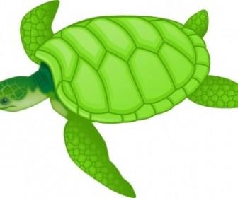 Vector Green Sea Turtle Vector Clip Art