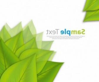 Vector Fresh Green Leaves ECO Background Vector Art