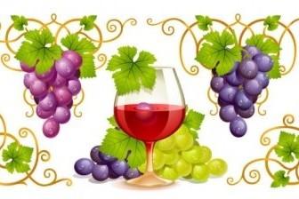 Vector Grape And Wine Vector Art