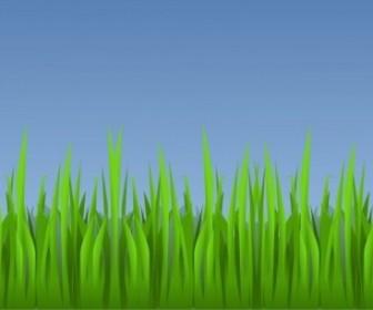 Vector Grass Vector Clip Art