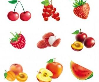 Vector Fruit Pictures 01 Vector Art