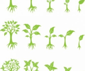 Vector Growing Tree Plant Vector Graphics