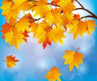 Vector Beautiful Autumn Leaf 05 Background Vector Art
