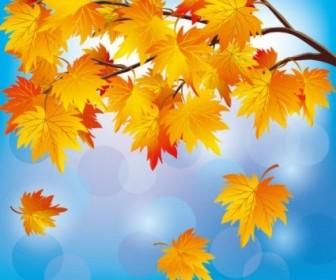 Vector Beautiful Autumn Leaf 05 Background Vector Art