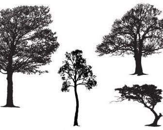 Vector Tree Master Pack Vector Art