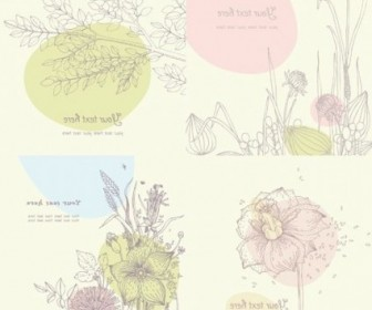 Vector Line Drawing Floral Vector Art