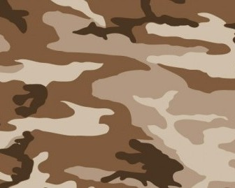 Vector Camo Pattern Vector Art