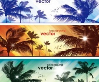 Vector Coco Banner02vector Vector Banner