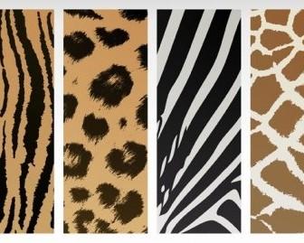 Vector Animal Texture Vector Art
