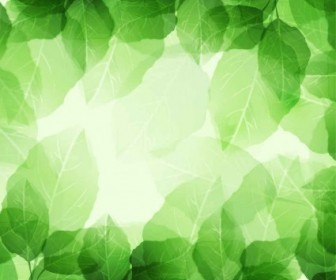 Vector Fresh And Green Leaves Background Vector Art
