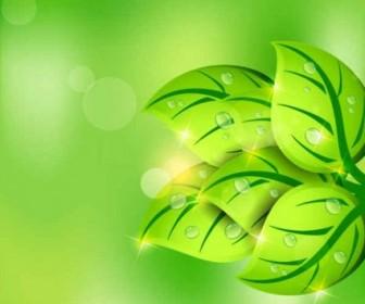 Vector Green Leaf Spring Background Vector Art