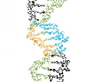 Vector DNA Strand Vector Art
