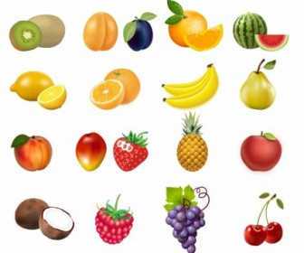 Vector Set Of Fruits Icon Vector Graphics