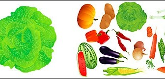 Vector Fruits And Vegetables Tree Plant Vector Graphics